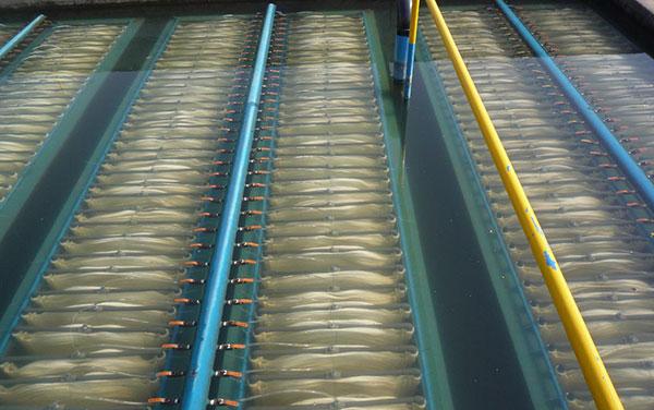 Msbr高效生物膜降解系统